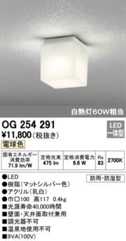 オーデリック 白熱灯60W相当  OG254291 S